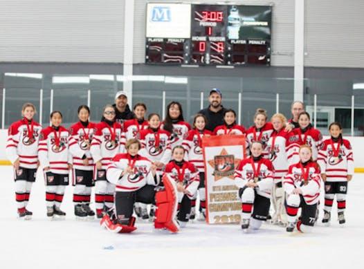ice hockey fundraising - Markham-Stouffville Stars Peewee A 2019/20