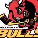 Belleville Bulls Novice AA