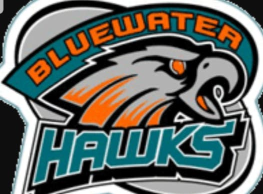 ice hockey fundraising - Bluewater Atom Girls