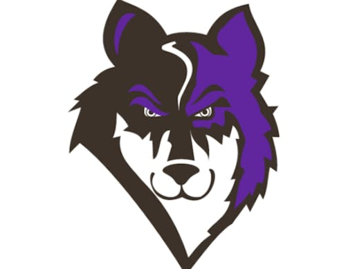 ice hockey fundraising - O.V. Wolves 2019-20