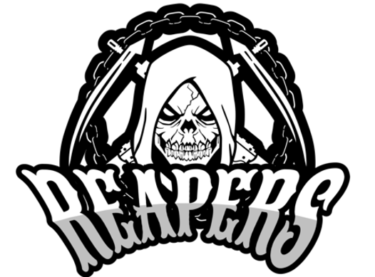 other sport fundraising - Reapers Ball Hockey