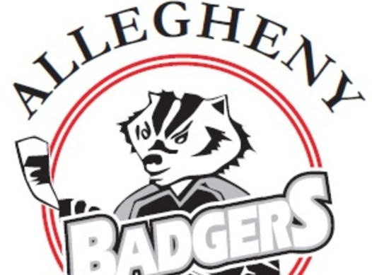 ice hockey fundraising - Allegheny Badgers 19-20
