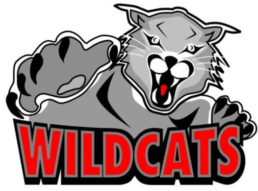ice hockey fundraising - 19-20 WildCats PeeWee AA