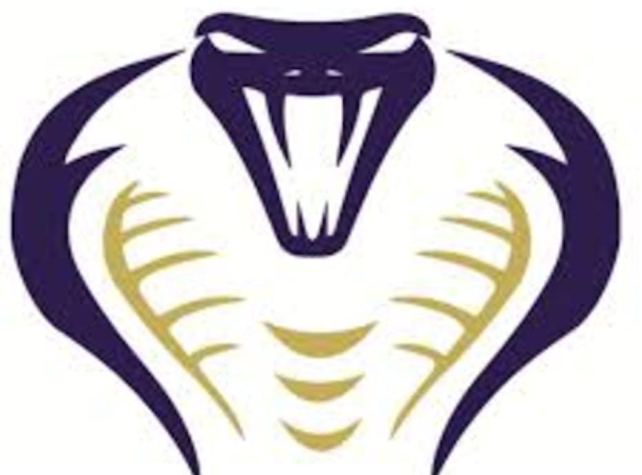 12U Cobras Venom Cooperstown 2020