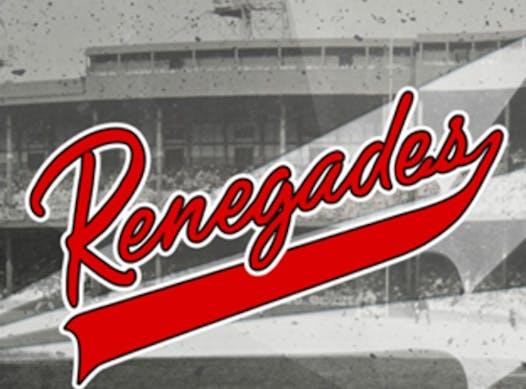 baseball fundraising - WHC Renegades 14U Red 2021/2022