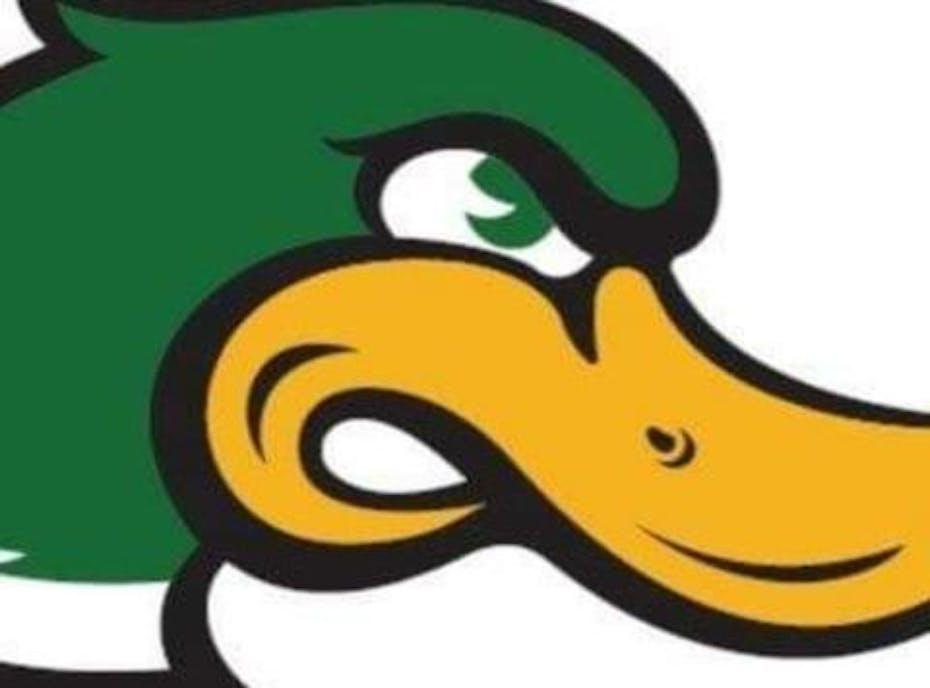 12U Ducks Green
