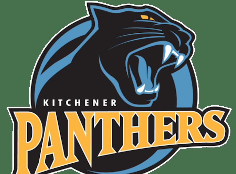 Panthers U14 A2 (2020)