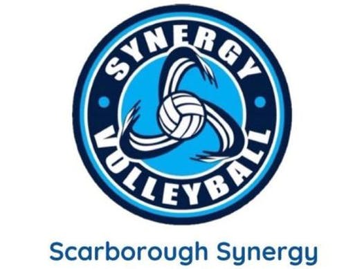 volleyball fundraising - Scarborough Synergy Hydra 14U