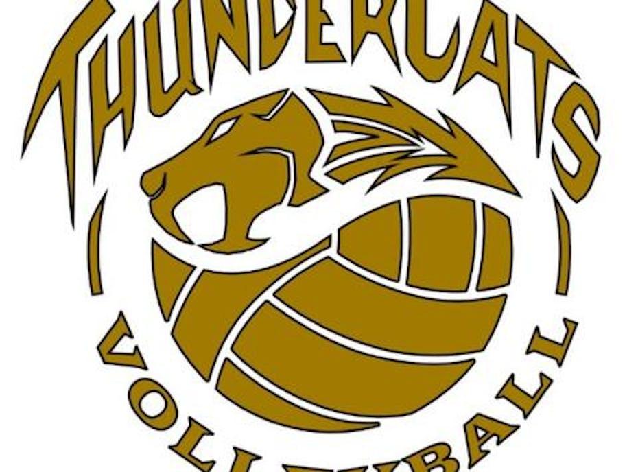 16UB Thundercats Legacy