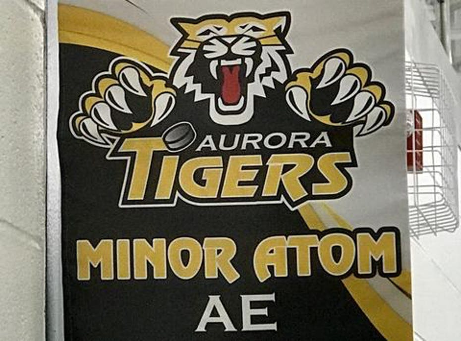AMHA Minor Atom AE- GO Tigers!
