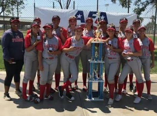 softball fundraising - USA Phenom 14U Tamai