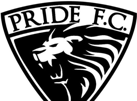 soccer fundraising - Pride F.C. - U6, U8, U10