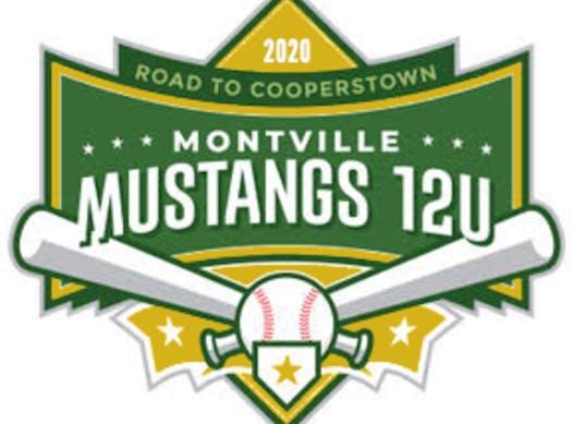 baseball fundraising - Montville 12U Mustangs