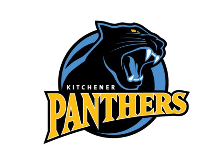 2007 AA Panthers