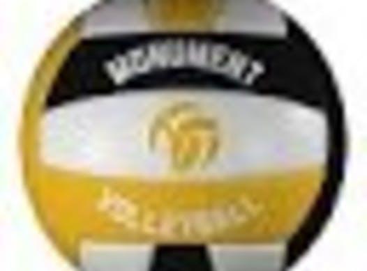 volleyball fundraising - Monument 17U