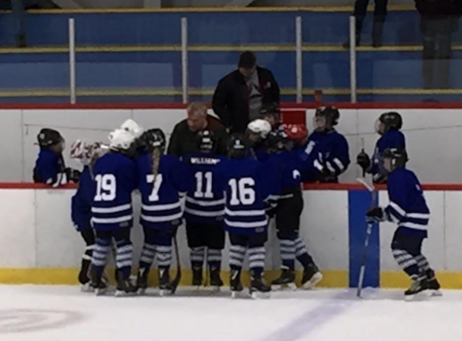 FYHA Peewee Leafs