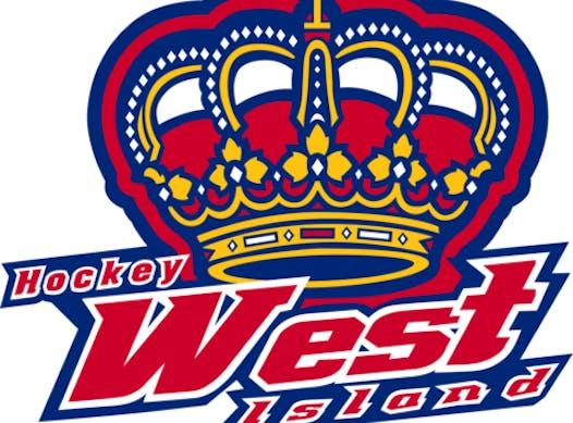 ice hockey fundraising - HWI Novice Lvl2 Kings