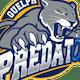 Guelph Predators U14R Ringette Team