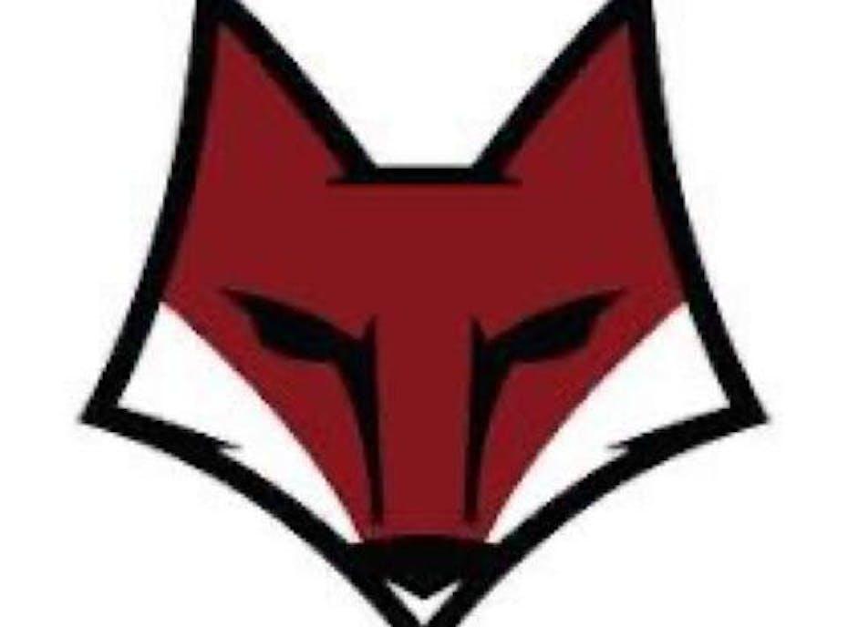 Summerville Swamp Foxes