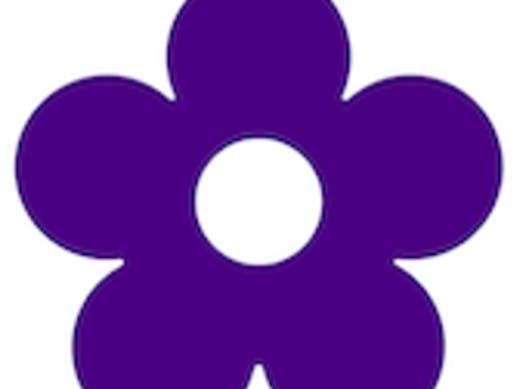 other organization or cause fundraising - Indigo Girls Group Winnipeg