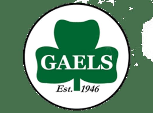 lacrosse fundraising - Green Gaels Junior B Lacrosse 2020