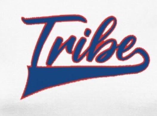 baseball fundraising - Palmdale Tribe