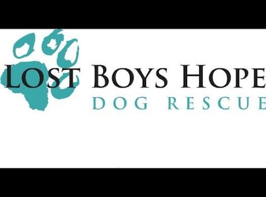 animals & pets fundraising - Lost Boys Hope