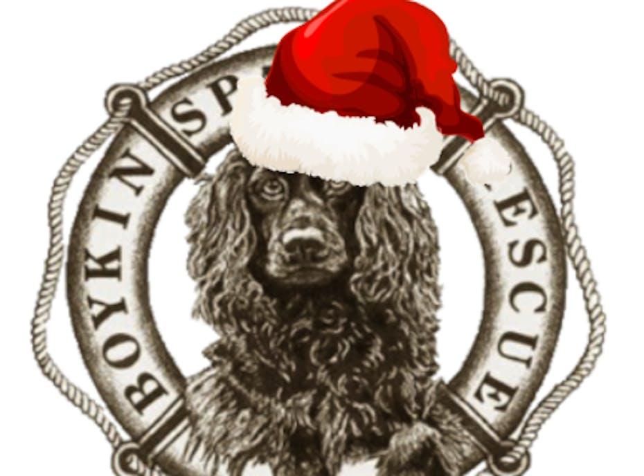 Boykin Spaniel Rescue, Inc. 2020 Christmas Fundraiser!
