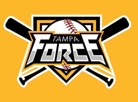 baseball fundraising - TPA FORCE YOUTH BASEBALL