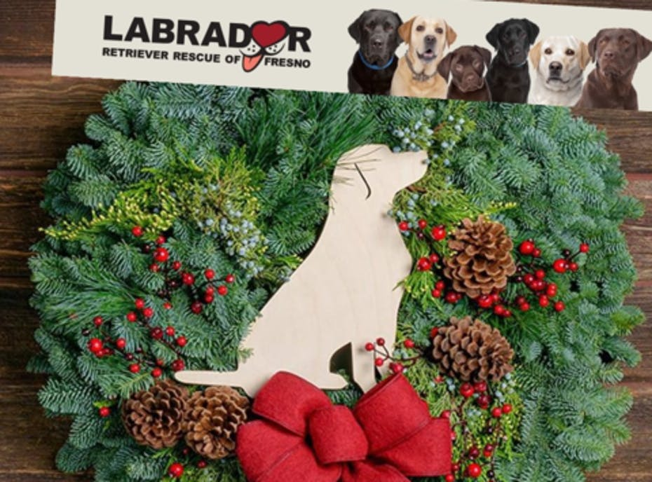 Labrador Retriever Rescue of Fresno