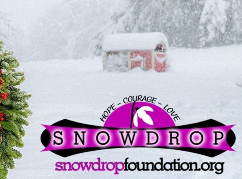 Snowdrop Foundation Teams up with Lynch Creek Farms 2020