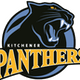 12U Kitchener  panthers A team