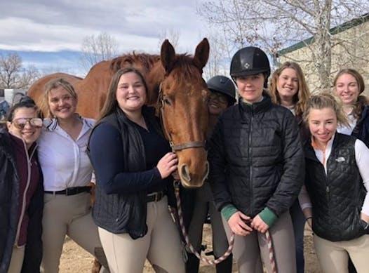 equestrian fundraising - CSU Equestrian