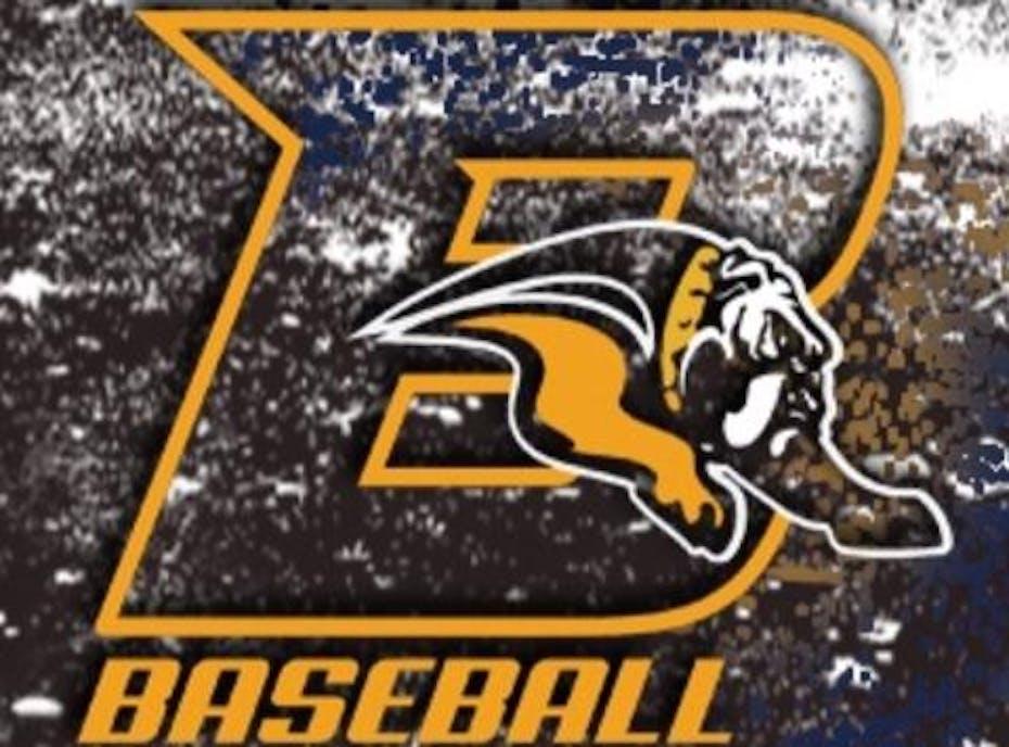 2021 Branchburg Bulldogs 9U