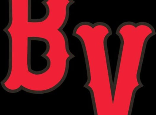 baseball fundraising - Beaver Valley Black