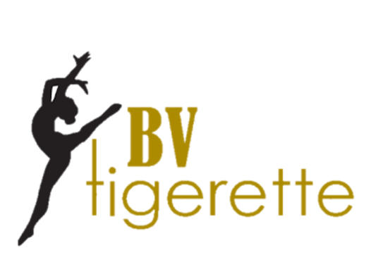 dance fundraising - 21/22 BVHS Tigerettes