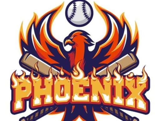 baseball fundraising - Elk Grove Phoenix