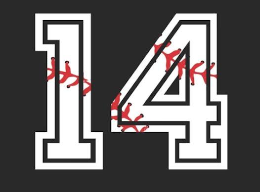 baseball fundraising - Wiley 14u