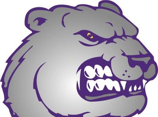 baseball fundraising - Jackson Bears 12u Purple