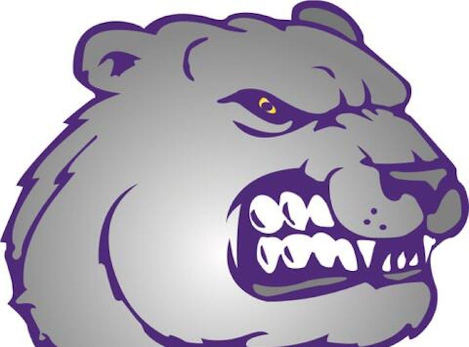 Jackson Bears 12u Purple