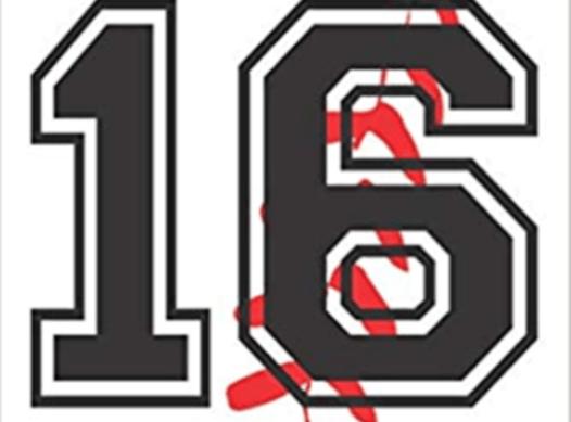 baseball fundraising - Summit City Sluggers- Farnham 16u