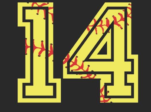 softball fundraising - Summit City Sluggers- Jake 14u Softball