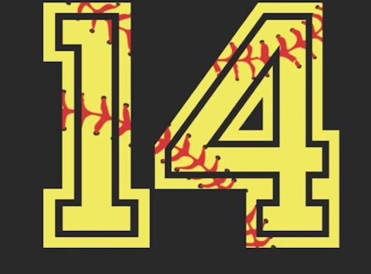 softball fundraising - Summit City Sluggers- Roney 14u Softball