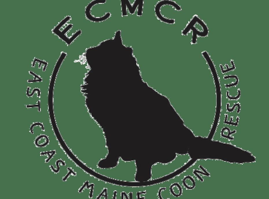 ECMCR Holiday Wreath Fundraiser