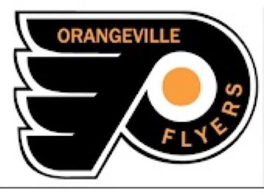 ice hockey fundraising - Orangeville Flyers U9 AE