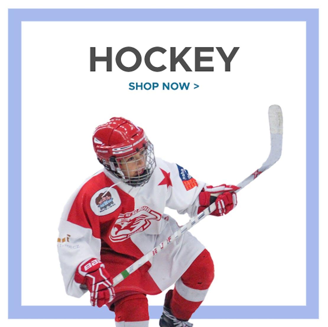 Hockeyguide grid