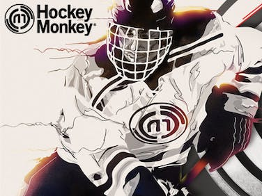 400x300 monkey hockey