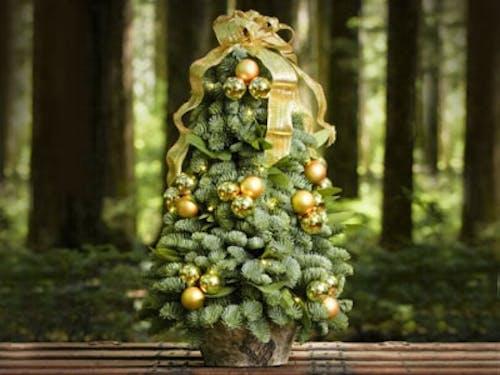 Golden Elegance Tree
