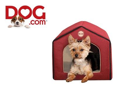 Dog 400 x 300.jpg?ch=width%2cdpr%2csave data&auto=format%2ccompress&dpr=2&format=jpg&w=250&h=187