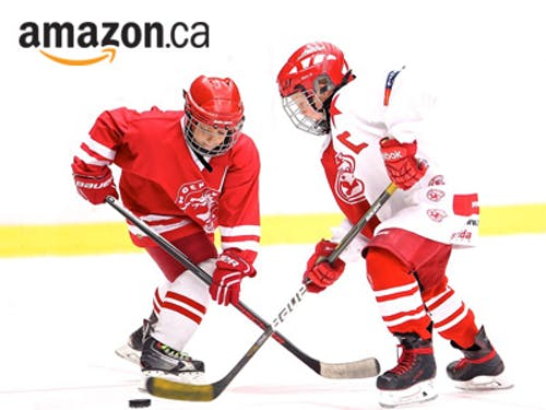 400x300 amazonsports hockey.jpg?ch=width%2cdpr%2csave data&auto=format%2ccompress&dpr=2&format=jpg&w=250&h=187